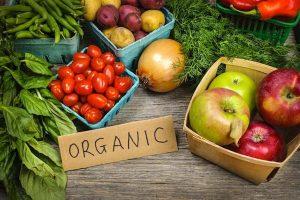 organicvsgefoods-organicallytrending