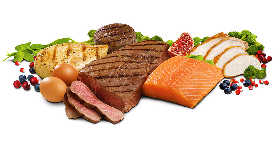 Increase Protein Bio-Availability