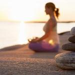 Natural Balance Brain Pep - The best option?