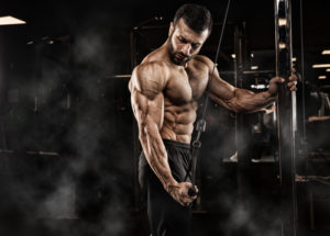 A Review of MuscleTech Phase8