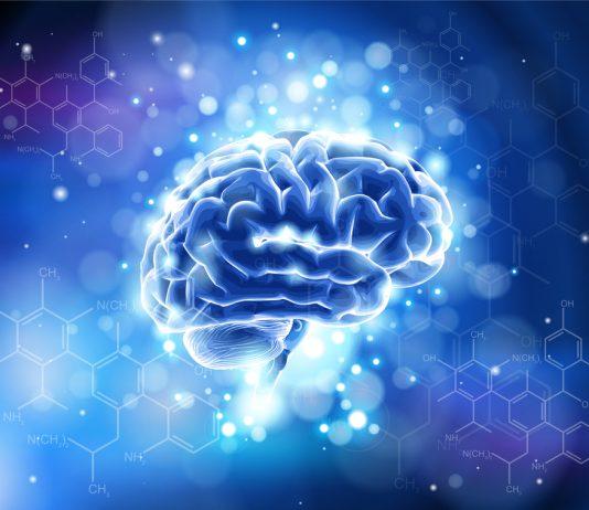 illuminated brain, organic chemistry, nootropic