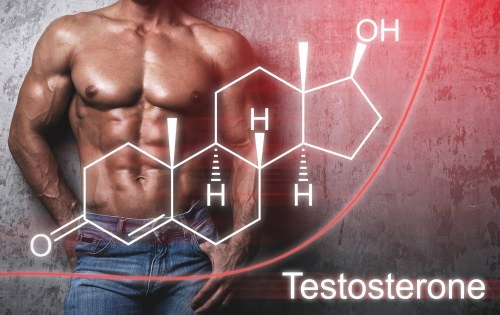Why Testosterone Management Is Crucial to A Man's Sexual Health